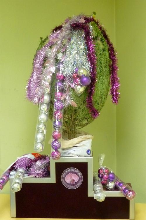 Tournoi de la Fleur d'Orchidée vol. II Sapin